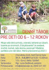 denny tabor 2017 Akademia Montessori final